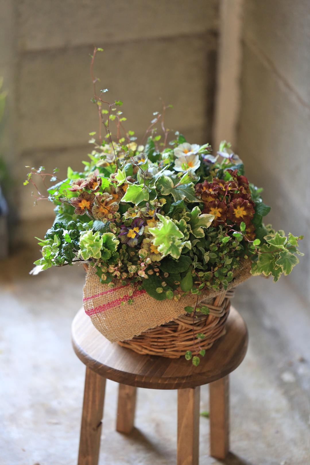 花のギャザリング寄せ植え